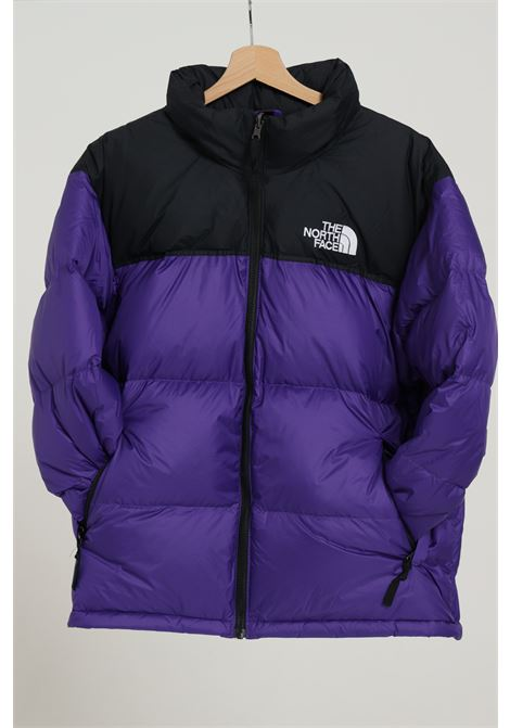 THE NORTH FACE | Jacket | NF0A3C8DNL41NL41
