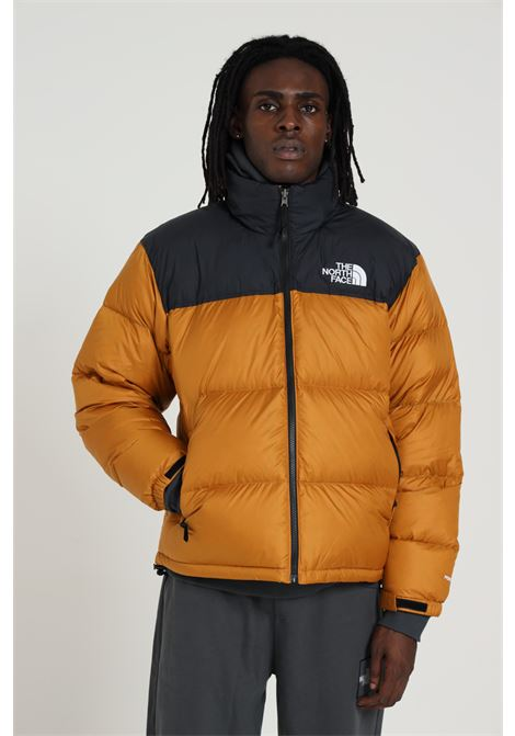 THE NORTH FACE | Jacket | NF0A3C8DVC71VC71