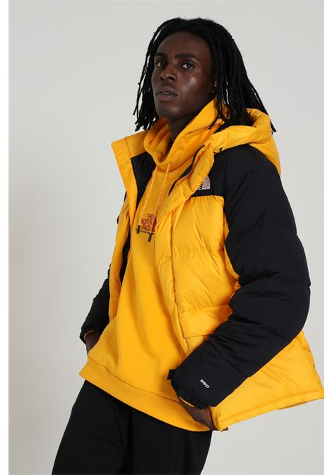 THE NORTH FACE | Jacket | NF0A4QYX56P156P1