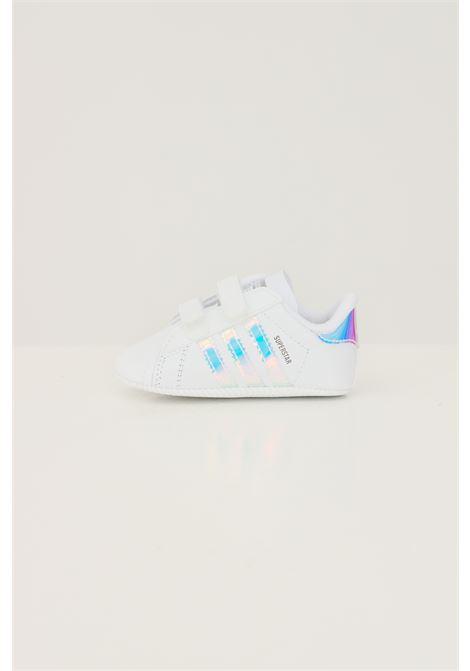 Sneakers superstar crib neonato bianco adidas ADIDAS | Sneakers | BD8000.