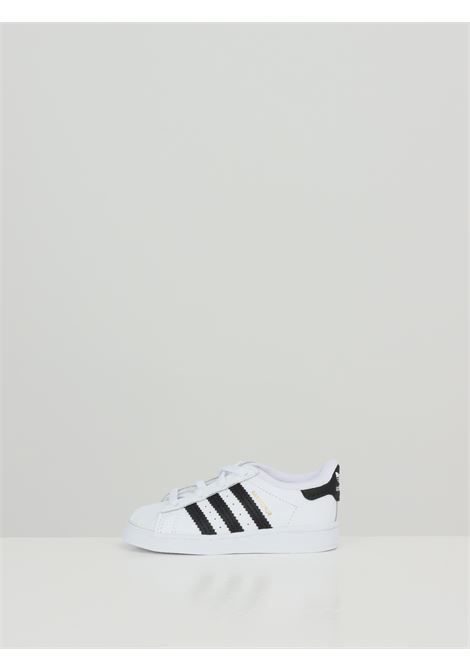 Sneakers superstar neonato bianco adidas ADIDAS | Sneakers | FU7717.