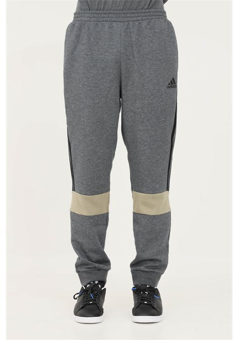 Pantaloni essentials colorblock uomo grigio adidas sport ADIDAS | Pantaloni | H14632.