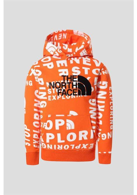 THE NORTH FACE | Sweatshirt | NF0A33H42B312B31