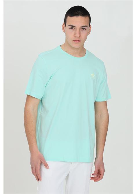 ADIDAS | T-shirt | GN3404.