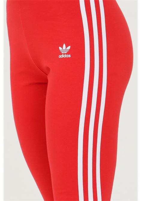 Pantalone tuta tight adicolor classic ADIDAS | Leggings | GN8076.