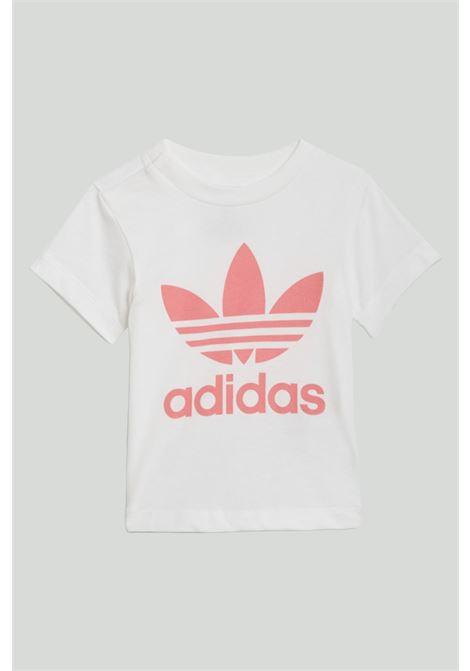 T-shirt trefoil ADIDAS | T-shirt | GN8175.
