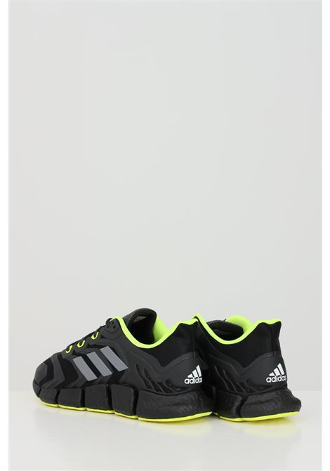 Sneakers CLIMACOOL VENTO HEAT.RDY ADIDAS | Sneakers | H67641.