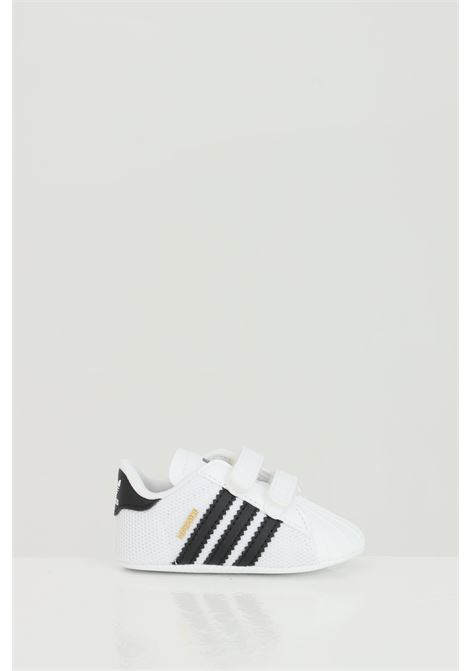 Sneakers superstar ADIDAS | Sneakers | S79916.