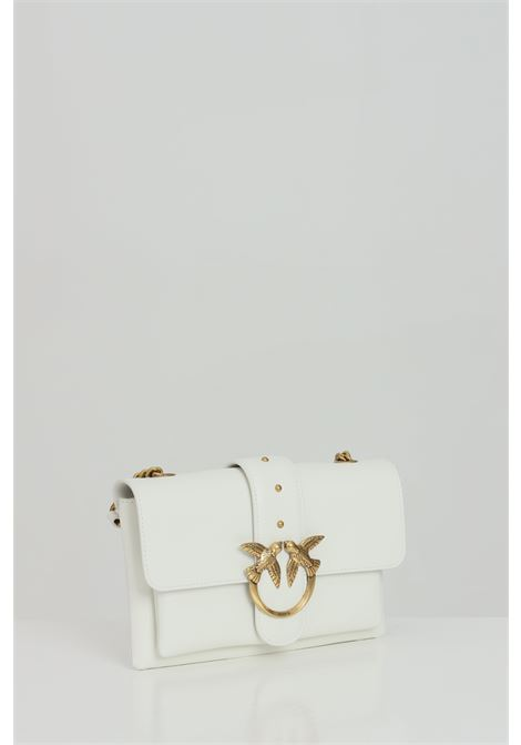 Clutch with metal shoulder strap. Logo with steel swallows PINKO | Bag | 1P2288-Y6XTZ14