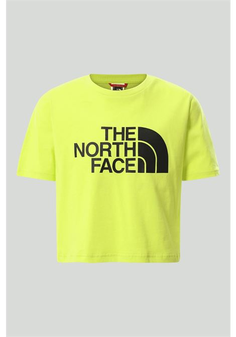 Green t-shirt in solid color with black logo on the front, short cut. Baby model. Brand: The north face THE NORTH FACE | T-shirt | NF0A558XJE31JE31
