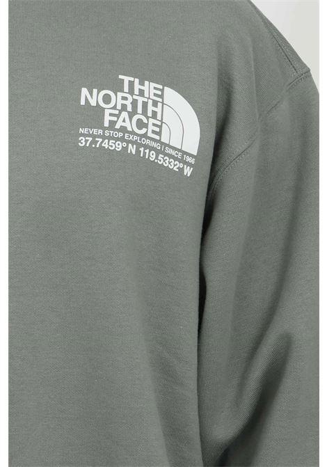 Felpa girocollo con maxi stampa sul retro THE NORTH FACE | Felpe | NF0A55MXV381V381