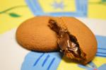 1449-chocolate-liquid-biscuits - Public Domain Pictures
