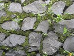 Stone Wall Texture Moss - Public Domain Pictures