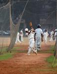 Cricket Young Batsman - Public Domain Pictures