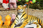 Tiger Soft Toy - Public Domain Pictures