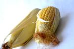 Corn Health Maize - Public Domain Pictures
