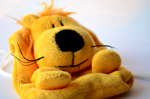 Cute Dog Soft Toy - Public Domain Pictures