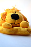 Soft Toy Dog - Public Domain Pictures