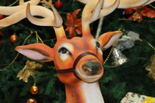 282-reindeer-christmas-tree-closeup - Public Domain Pictures