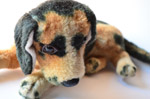 Sad Dog Soft Toy - Public Domain Pictures