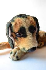 Sad Dog - Public Domain Pictures