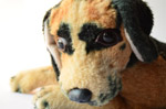 Sad Unhappy Dog - Public Domain Pictures