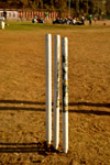 Cricket Pitch Stumps - Public Domain Pictures