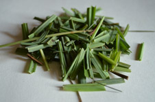 Lemongrass Leaves Cut - Public Domain Pictures