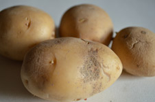 Potato Closeup - Public Domain Pictures