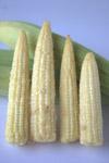 Baby Corn Vegetables - Public Domain Pictures