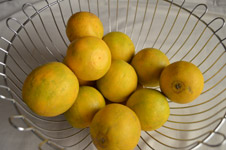 Lime Basket 2 - Public Domain Pictures