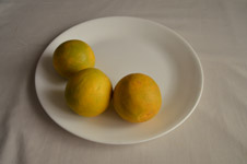 334-lime-on-dish-2 - Public Domain Pictures