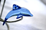 Dolphin Glass - Public Domain Pictures