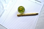 Paper Weight Pen - Public Domain Pictures