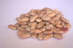 Beans Pulses - Public Domain Pictures