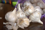 Garlic - Public Domain Pictures