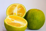 Lime Cut Fruit Citrus - Public Domain Pictures