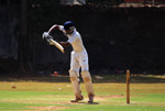 Batsman Defense Cricket 3 - Public Domain Pictures