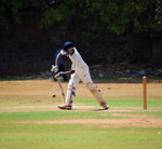 Cricket Batsman - Public Domain Pictures