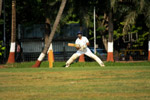 Cricket Batting 2 - Public Domain Pictures