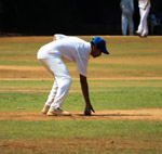 Cricket Fielder - Public Domain Pictures