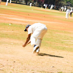 Cricket Fielding - Public Domain Pictures
