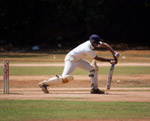 Cricketer Batting - Public Domain Pictures