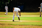 Fielder Quick Action Cricket - Public Domain Pictures