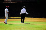 Umpire No Ball - Public Domain Pictures