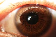 409-eye-closeup - Public Domain Pictures