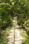 Pathway In A Garden - Public Domain Pictures