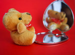 Teddy Bear Mirror Small - Public Domain Pictures