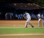 Cricket Academy - Public Domain Pictures
