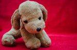 Soft Toys Dog Puppy - Public Domain Pictures